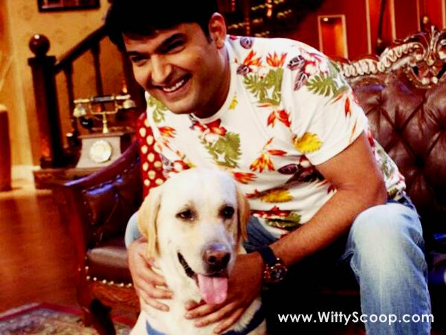 PETA Appreciated Kapil Sharma For Concern Towards Animals