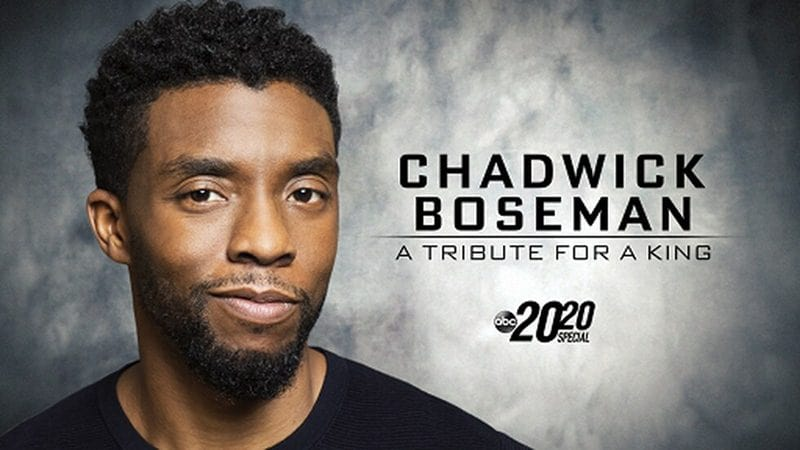 Angelina Jolie, Paul Rudd, Mark Ruffalo & More Celebs Honors Chadwick Boseman