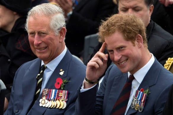 Prince Harry Obtains Emotional & Financial Support From Charles