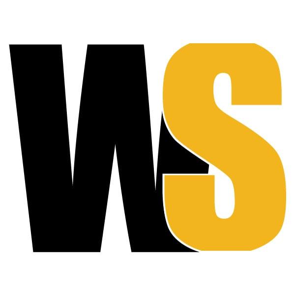 Witty Scoop Logo