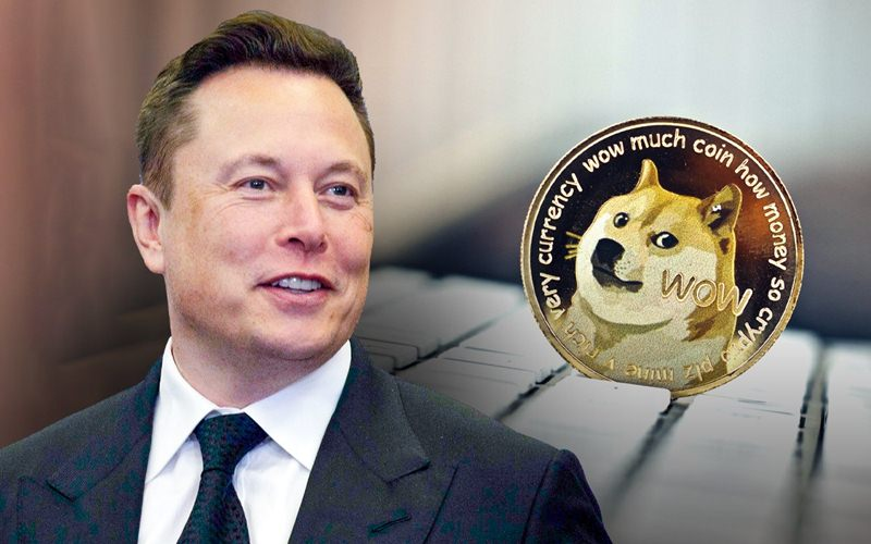 Netizen Reacts To Elon Musk's Dogecoin Comment